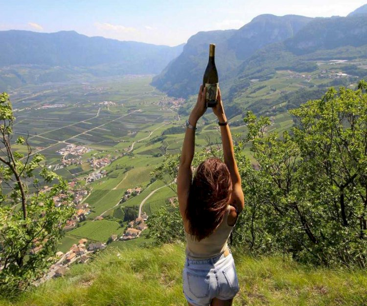 La Strada del Vino dell' Alto Adige